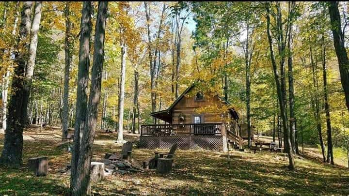 Bearadise Log Cabin~Perfect Secluded Log Cabin~