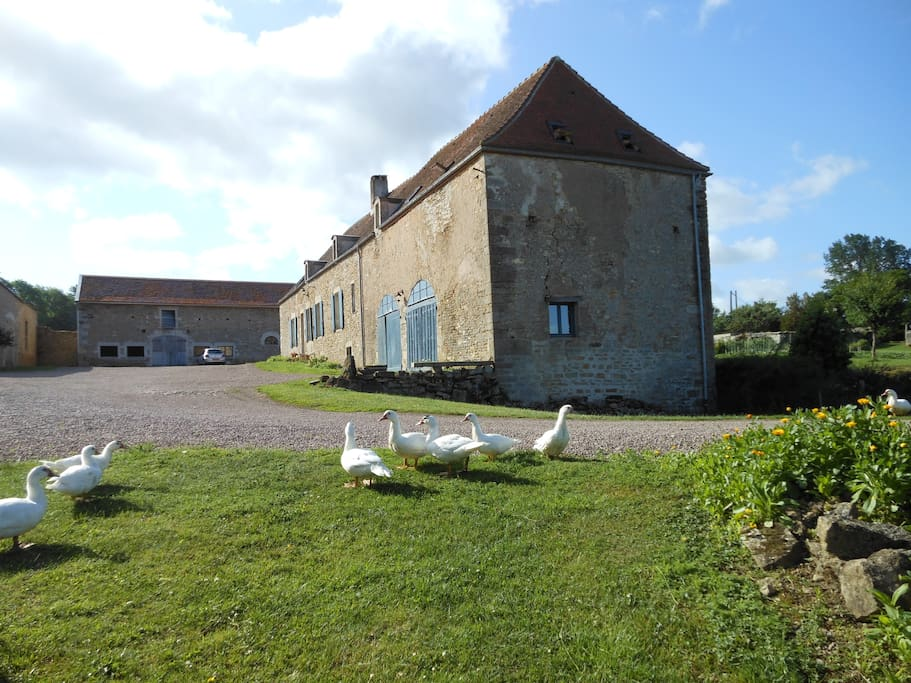 cour de la ferme du château