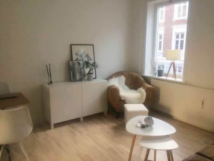 Lys moderne lejlighed i centrum/Beautiful flat