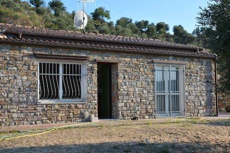 Casa rurale tra gli ulivi e il mare - Gorleri - House