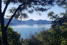 Queen Charlotte Sound from Kaipupu Point Sounds Wildlife Sanctuary