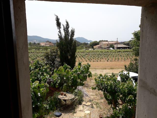 Chambre dans un mas provençal au milieu des vignes