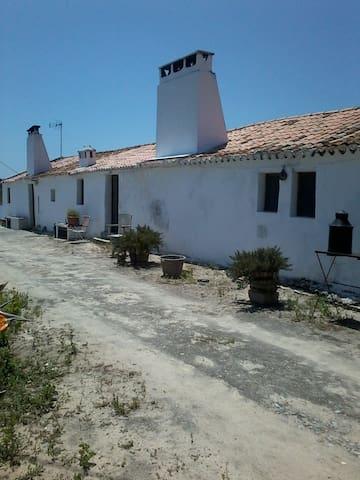 """""""Monte dos Cantos T2""""  Alentejano a 2 km da praia. - Melides - Villa"""