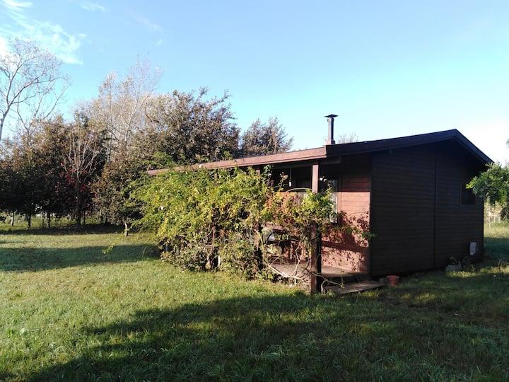 Casa rural entre árboles y pájaros.