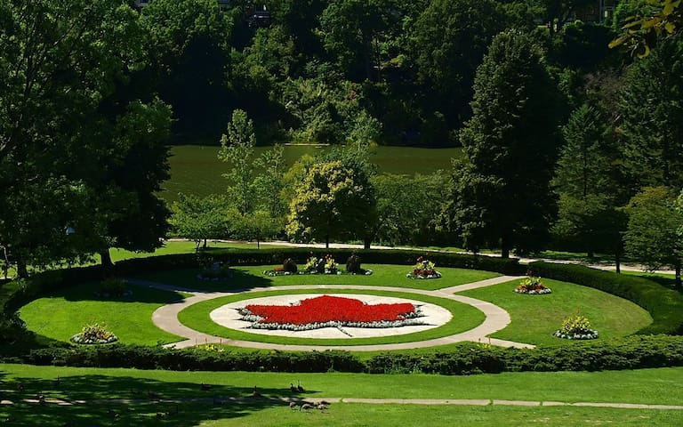 Enjoy High Park! We are walking distance to Toronto's biggest park.