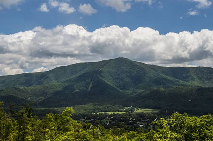 Teaberry Ridge