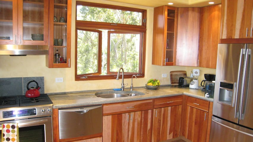 Custom cook's galley kitchen with dual-fuel range.