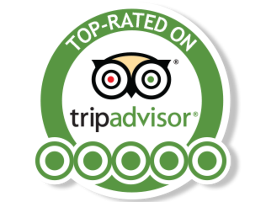 Top Rated on TA