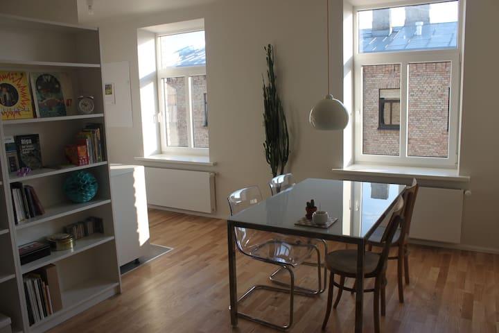 Quite and sunny apartment in Grīziņkalns