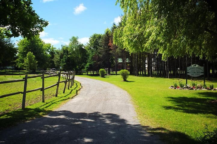 Horseback riding ranch - Saint Williams - Dom