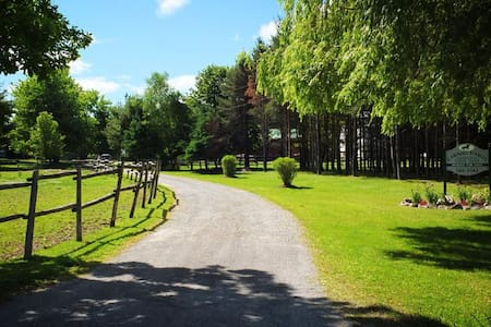 Horseback riding ranch - Saint Williams - Ház