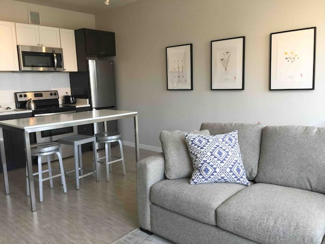 Serene & Cozy Apartment- quick walk to lightrail