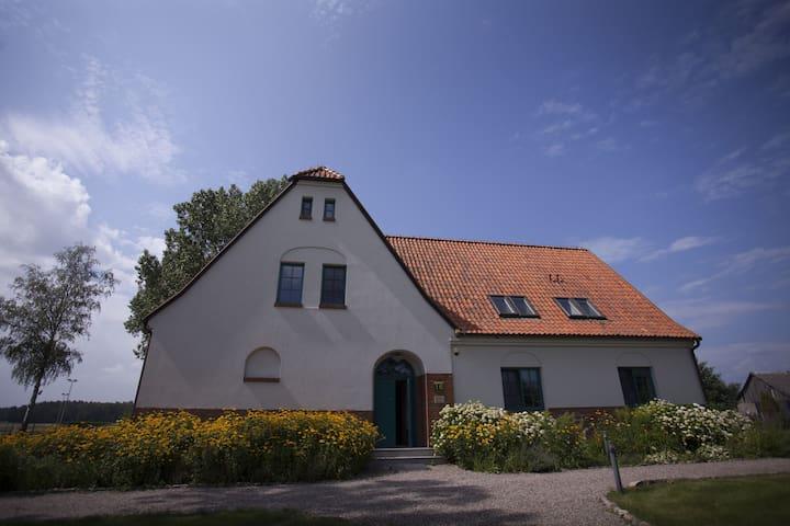Stara Szkoła Browina
