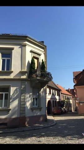 Apartm.mit Kachelofen im Herzen Hambachs -Weinstr.