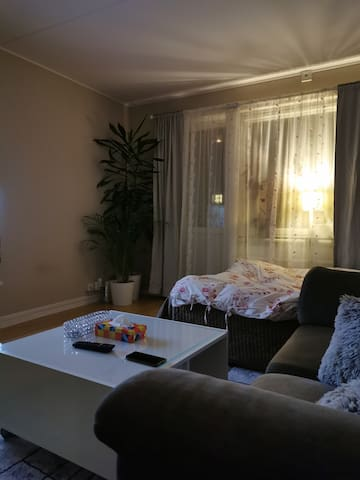 Entire Apartment in Stockholm near metro  station