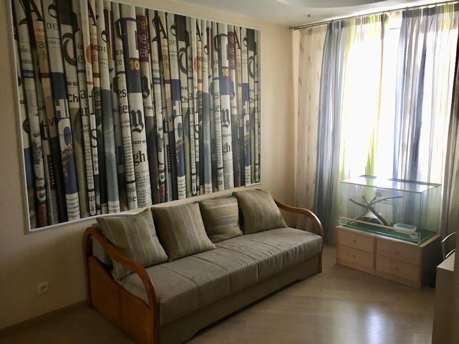 Большая светлая комната с раскладным диваном-кроватью
