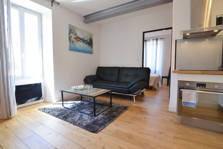 Lovely apartment in Biarritz