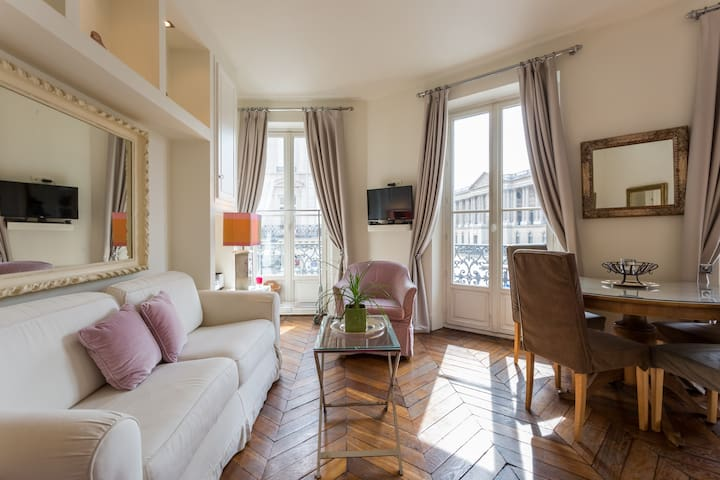 Stunning 1bedroom facing the Louvre Museum - Paris - Apartment