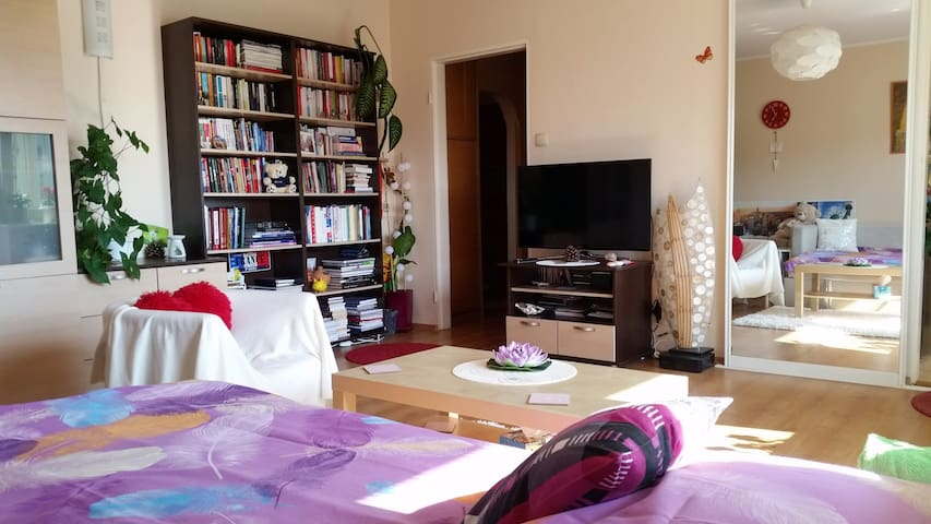 Sunny Apartment /2Beds 3Guests/