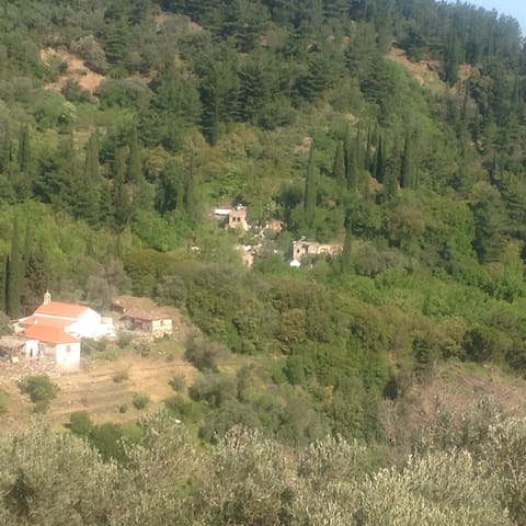 Houses in the nightingale valley of Samos - Agios Konstantinos - 통나무집