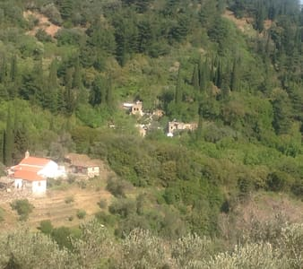 Houses in the nightingale valley of Samos - Agios Konstantinos