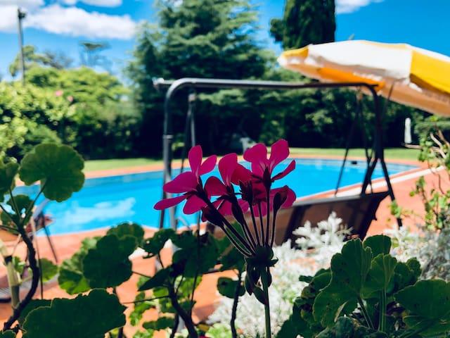 Casa con amplia piscina y jardines arbolados