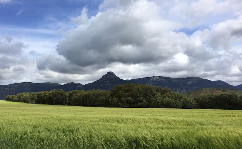 Beautiful Spanish Pyrenees - Igriés - Casa
