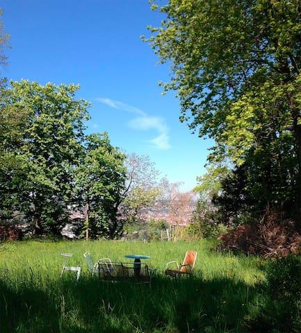 Tagesausflug in sonnigen Garten mit Aussicht
