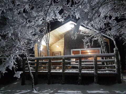 Refugio bosque ñirre