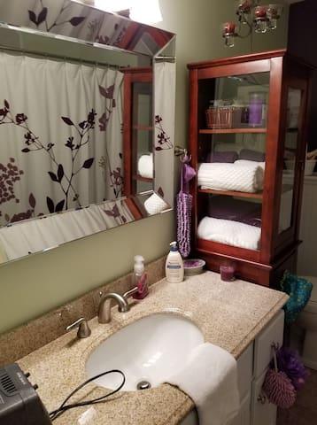 Lower level full bathroom
