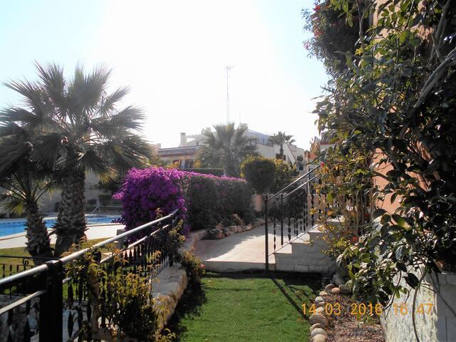 Villa with large garden, bbq and views to die for! - San Miguel de Salinas - Villa