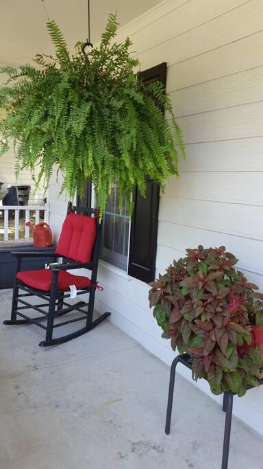Left Porch View