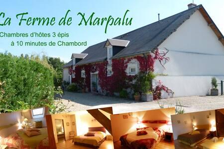 Chambre Sarcelle pour 2 - Chambord à 10 mn - La Ferté-Saint-Cyr