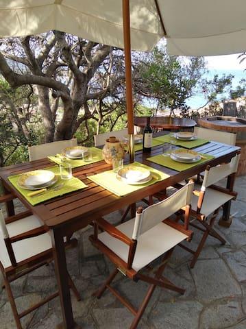 pranzare o cenare all'aperto all'ombra dell'Ulivo. tutto quello che vedete è a vostra disposizione