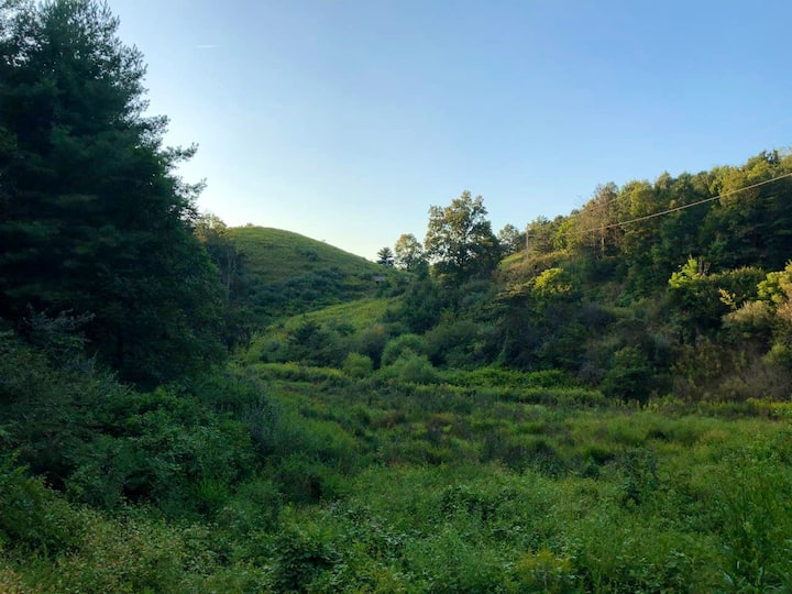 Spring House at Jewel Hill Farms-Forest Bathing