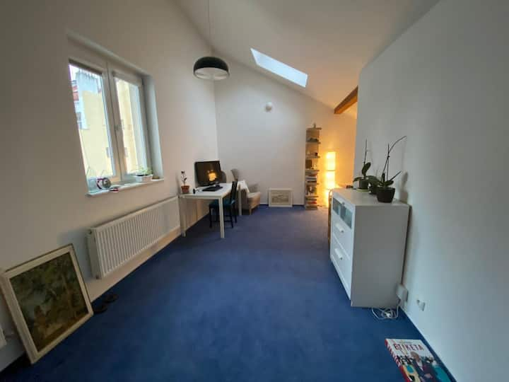 Loft apartment for flat share 3- 4 months