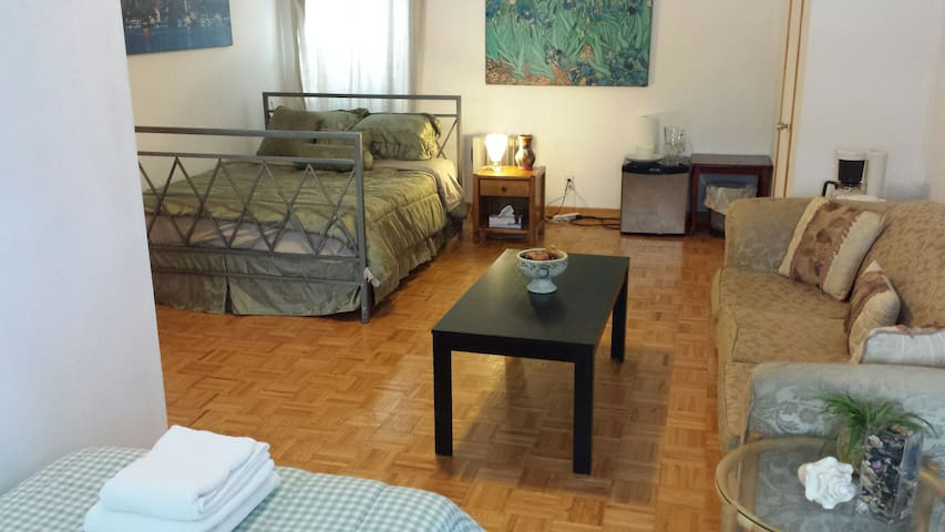 Sunny 1 BDRM in St-Laurent near airport priv. bath