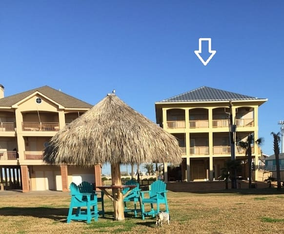 Blue Heron - Jamaica Beach - Appartement