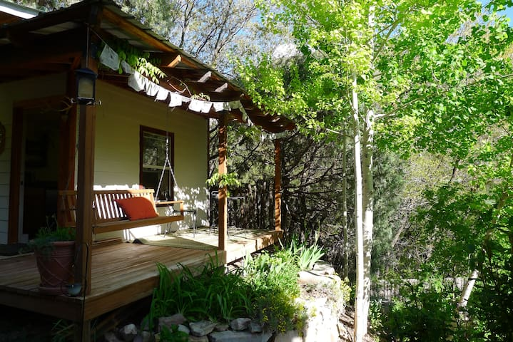 Casita Colibri - cozy tiny house, outside of DGO - Durango - Kisház
