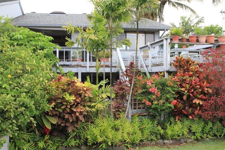 Maui Bob's - Lahaina - Dom