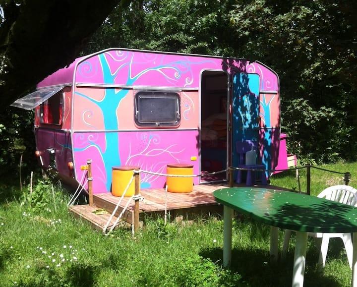 La Caravana Hippie