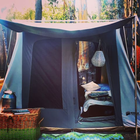 Tent Glamping -