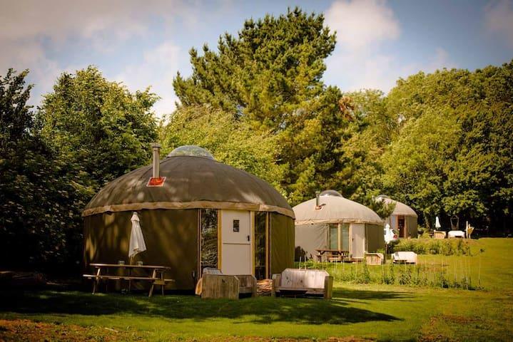 The Garlic Farm Yurts - Eric