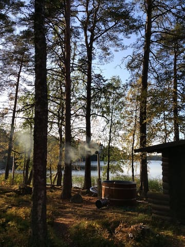 Traditional Finnish cottage surrounded by a lake