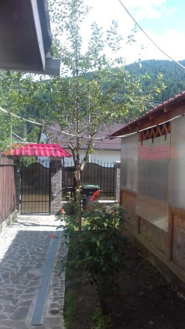 Apartament in vila zona pârtia de ski Sorica Azuga