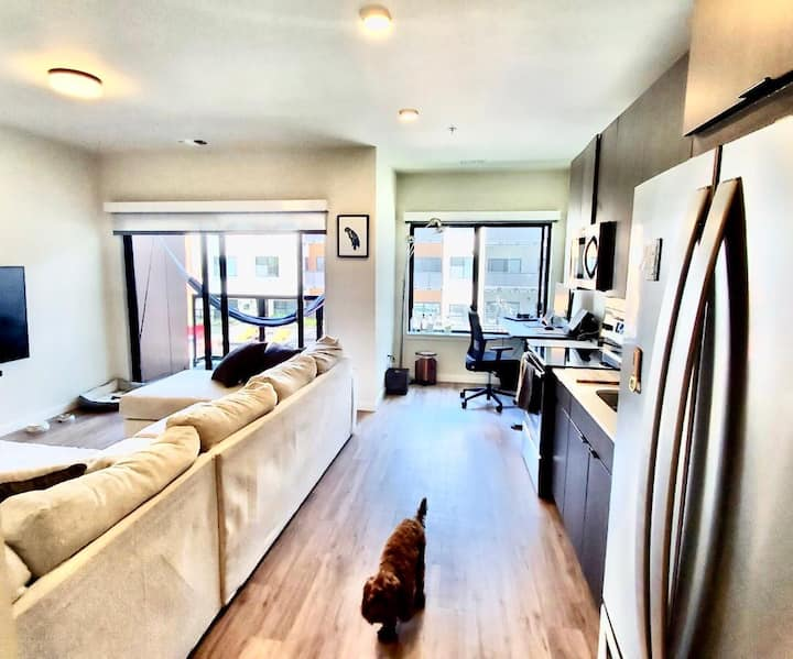 Modern, fully furnished apartment in downtown CS.