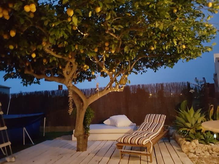 Casa Limon-Rabdells Beach -Oliva- Valencia- Spain