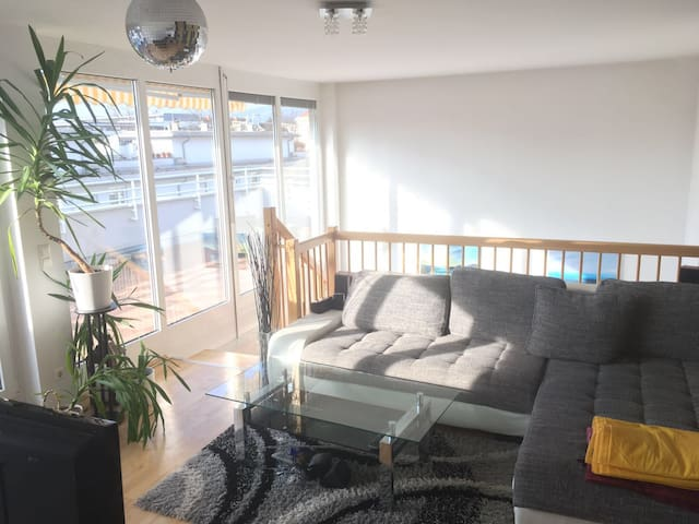 Nice central Penthouse with 55m2 roof terrace - Graz - Appartement