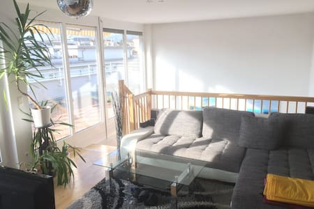 Nice central Penthouse with 55m2 roof terrace - Graz - Wohnung