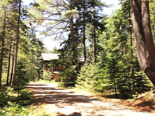 Birdsong Cabin on 2 Secluded Acres near Bar Harbor